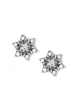 Arctica Mini Post Earrings